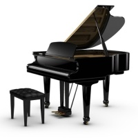 Need a piano moved? Apple Movers in Yukon, OK which serves Oklahoma City & Surrounding areas would be happy to do so.